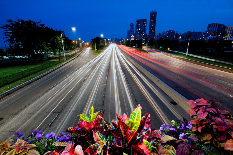 LSD Bridge To Skyline Later - with Flowers 3763