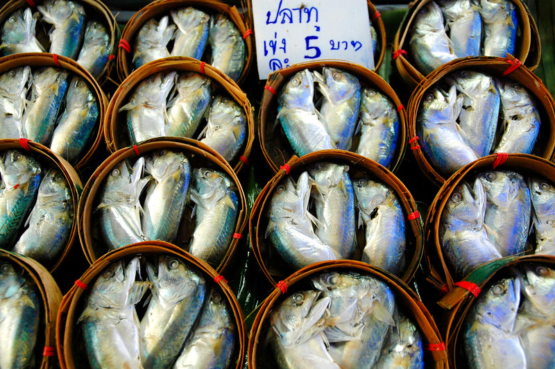 Fish For Sale<br /> Samut Songkhram Railway Market