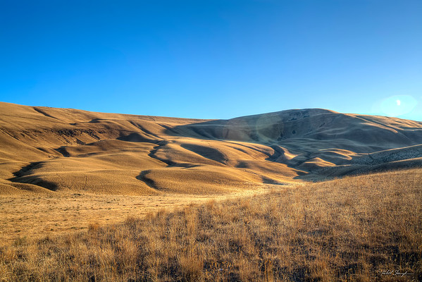 Eastern Washington Dunes