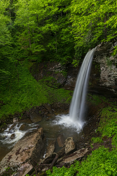Lower Falls of Hills Creek