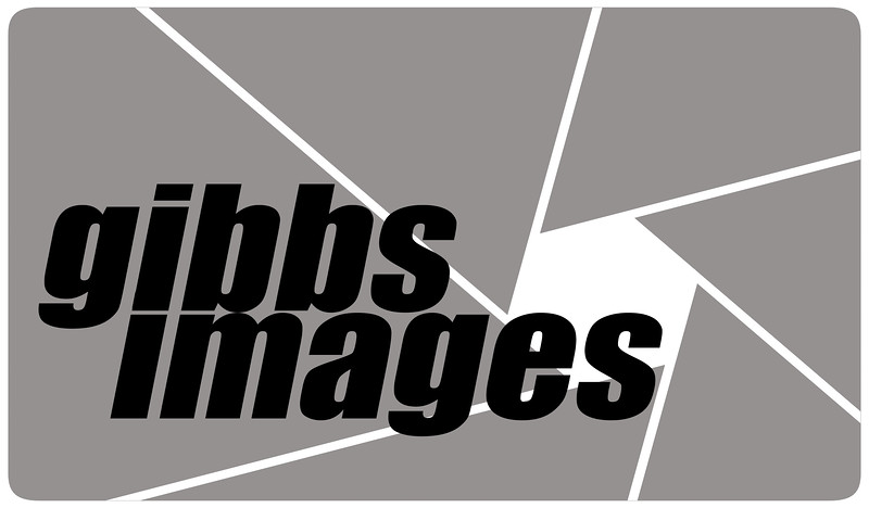 gibbsimages bw