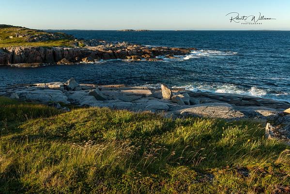 Shoreline Along the Greenspond Island Trail