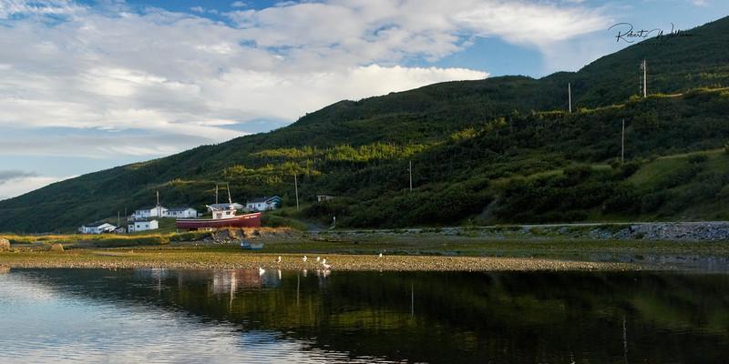 Trout River Shore