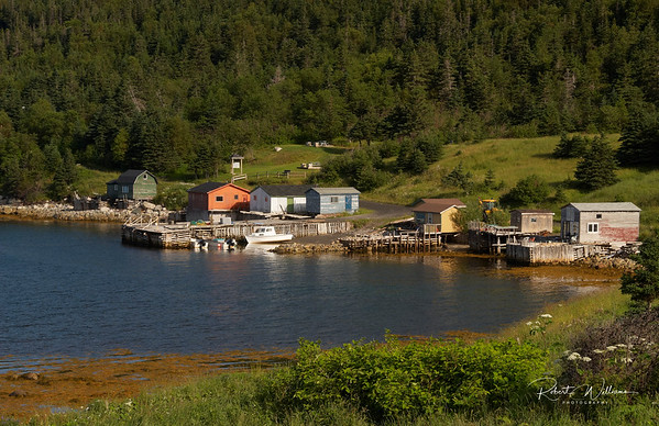 Wild Cove on Bonne Bay