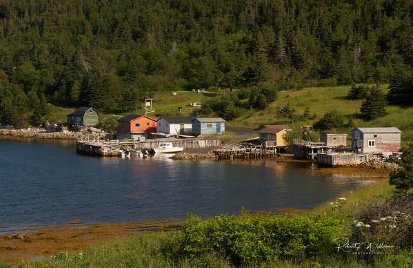 Wild Cove on Bonne Bay