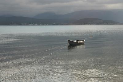 Fishing Boat in Bonne Bay