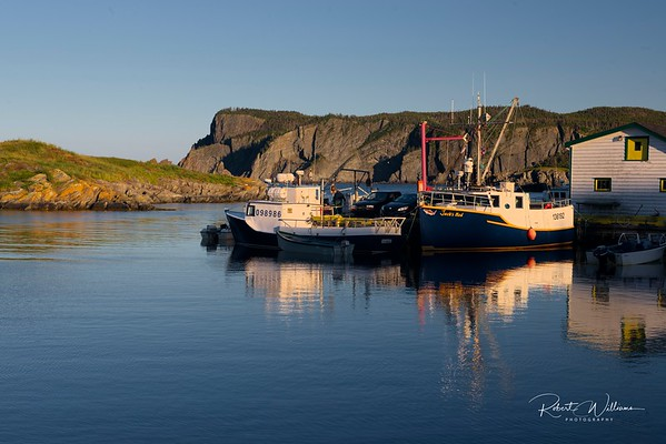 Fishing Boats in Brigus South