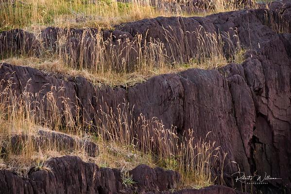 Rocks and grass, Keels, Newfoundland