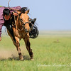 Horseman Naadam Festival,<br /> Gobi Desert