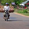 Piglet transport