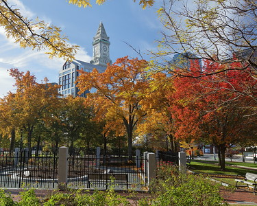 Fall Scenes from Boston (Sandy Tambone)