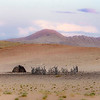 20161108-Namibia-_DSC6900