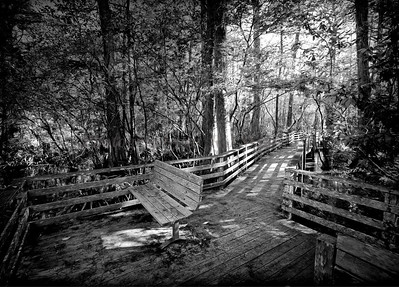 Boardwalk 9643 bw