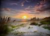 Sunset 3098  a