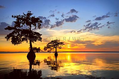 Sunset 1401