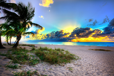 Sunrise Fort Lauderdale 6931a 2