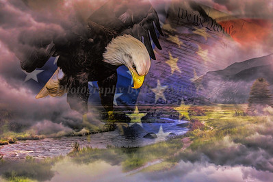 Eagle and flag 3029 a