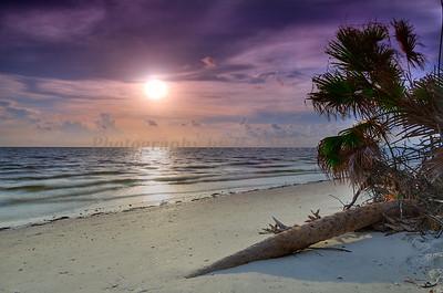 Sunset 8863 c