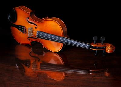 Violin 2574
