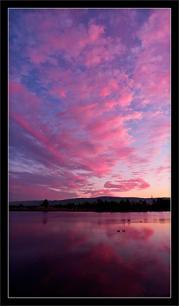 Pinks Clouds at Sunset<br /> <br /> Sunset clouds and colors<br /> over a calm Shoreline Lake<br /> <br /> Shoreline Park<br /> Mountain View, California<br /> <br /> 28-SEP-2010