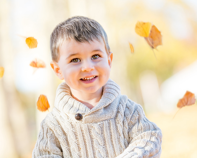 Cohen Fall Family Photos