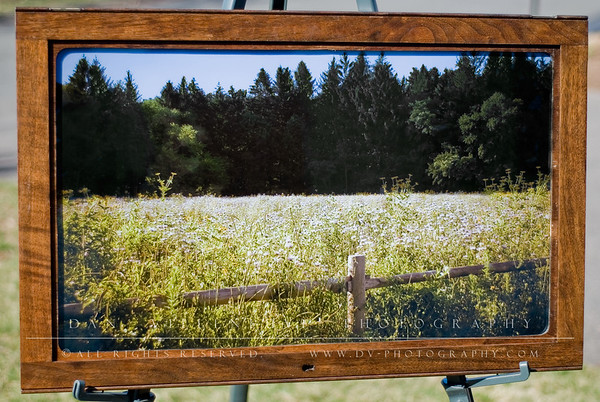 "Piece #2 Title: ""Belding Wildflowers"" Price: $400 Location: Not currently on display. Overall Dimensions (WxHxD): 33""x21""x1"" Description: Solid 1"" thick wood frame (possibly Chestnut) with beaded detail on top and bottom. Includes wooden insert which gives a wooden mat feel. Also has original brass hinges (top) and original, working skeleton key hardware. The print is a Metallic Print which adds an extra feeling of depth, especially as the lighting changes. Ready to hang via professional wire (plastic coated wire to prevent corrosion). Includes ""About this photo"" and artist's signature on back."