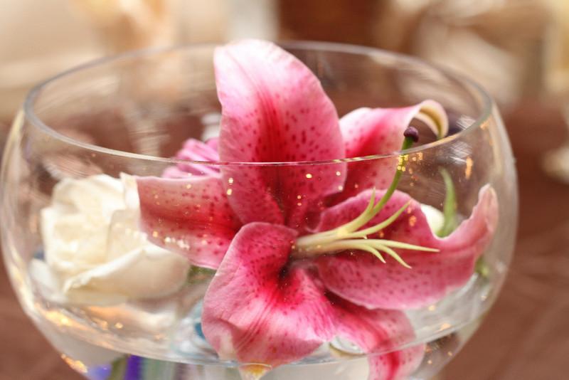 bap_haque-wedding_20110703175641-IMG_8079