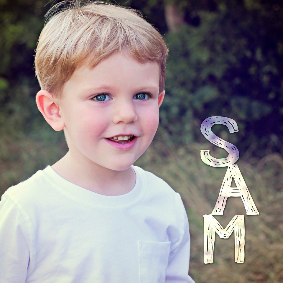 Sam's Storyboard & Book