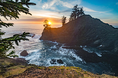 Seal Cove & Point