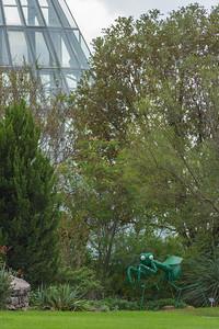 San Antonio Botanical Garden-25