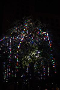 2014-12 San Antonio Christmas Lights (39 of 58)