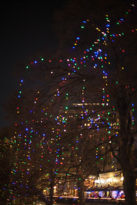 2014-12 San Antonio Christmas Lights (19 of 58)