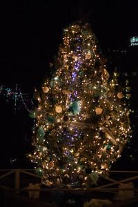 2014-12 San Antonio Christmas Lights (33 of 58)