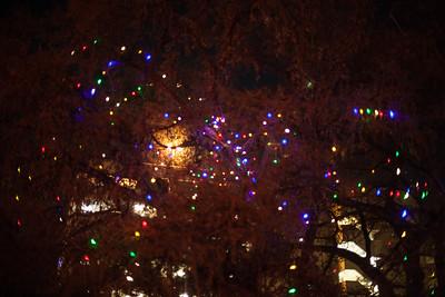 2014-12 San Antonio Christmas Lights (13 of 58)