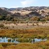 San Ardo Oil Field