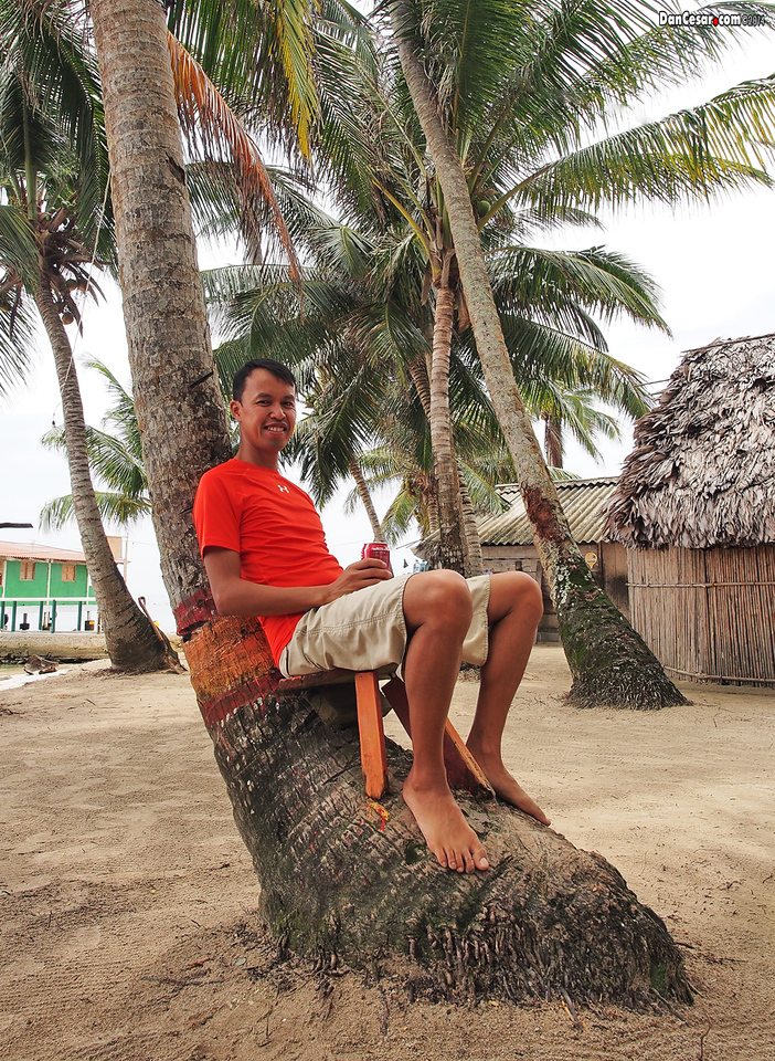 Chillin' under a Coconut Tree