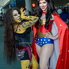 Cheetah and Wonder Woman