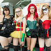 Catwoman, Robin, Poison Ivy, and Harley Quinn