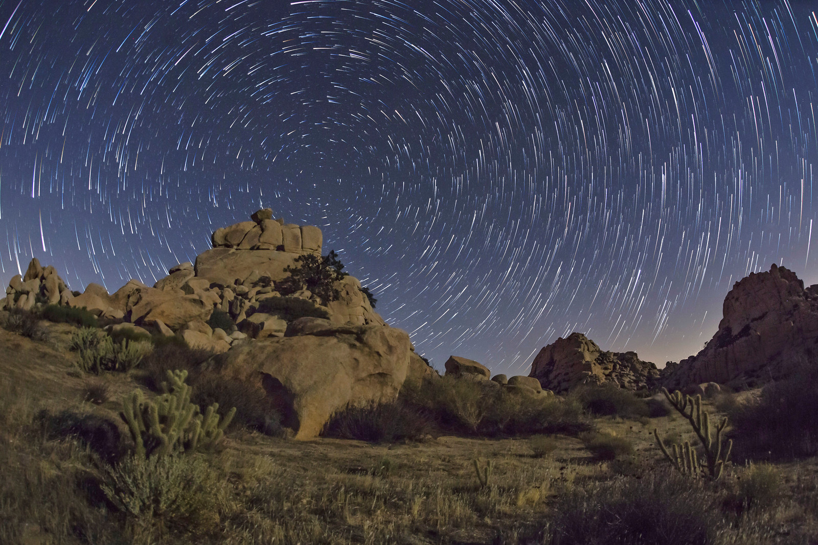 More Star Trails at San Diego's Valley of the Moon
