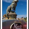 Bulldog hood ornament on Mack truck