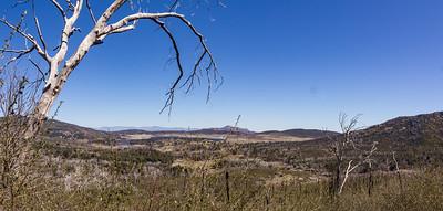 Hike - Azalea Glen Trail - March 1, 2017