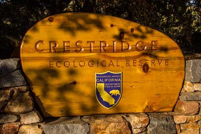 Hike - Crest Ridge Ecological Reserve - Nov 2, 2016