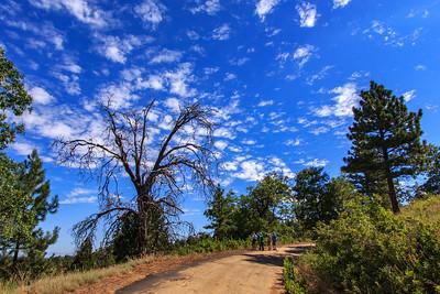 Hike - Laguna's Agua Dulce & Wooden Hill - July 12, 2017