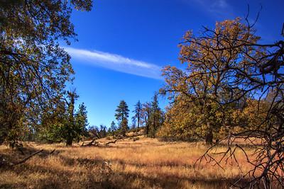 Hike - Mt. Laguna's Sunset Trail - Oct 5, 2016
