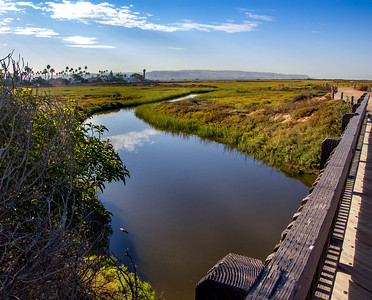 Hike - Tijuana River Estuary - Sept 28, 2016