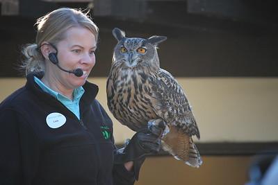 San Diego Zoo 2015-10-26
