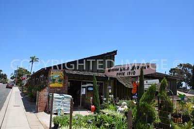 1525 Fort Stockton Drive, San Diego - Mission Hills - 1910 Mission Hills Nursery
