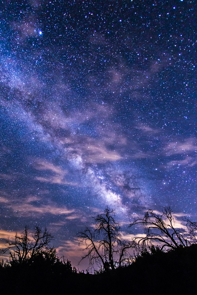 Partly cloudy Milky Way and some dead trees