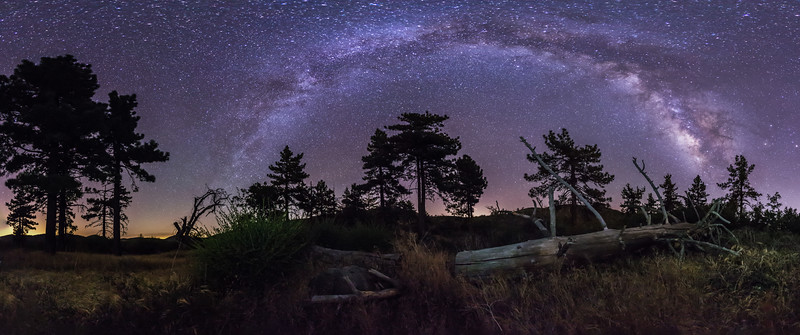 Milky Way Over Fallen Tree Panorama