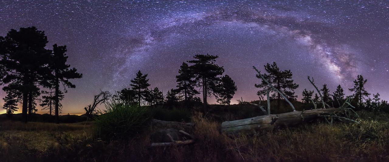 Milky Way Over Fallen Tree Panorama
